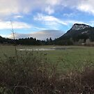 Mount Maxwell Salt Spring by DABlair