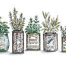 Herbs in Vintage Tins by StrangePersimon