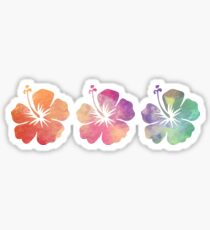 Three Hibiscus Flowers Sticker