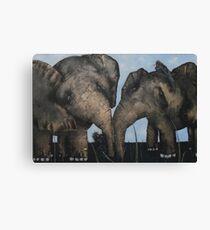 Wacky Birds on Baby Elephants Canvas Print