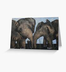 Wacky Birds on Baby Elephants Greeting Card