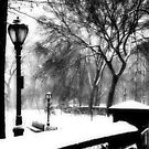 entrance to central park by ShellyKay