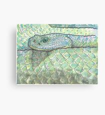 Snake watercolor study Canvas Print