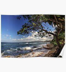 The Beach At Kapaa Poster