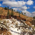 Winter On The Bizz Johnson Trail by James Eddy