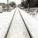 Let it snow, let it snow, let it snow..☺☺☺ by jammingene