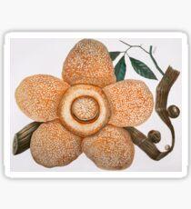 Rafflesia Arnoldii Sticker