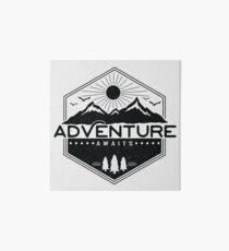 Lámina de exposición La aventura espera