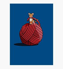 Tigers ball of Yarn Photographic Print