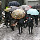 The Umbrella Tribe by kibishipaul