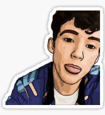 Troye Sivan Sticker