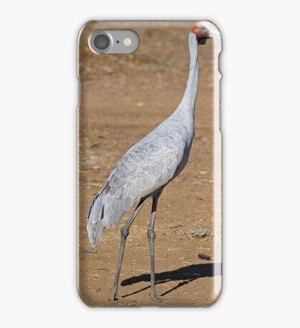 Brolga at Longreach iPhone Case/Skin
