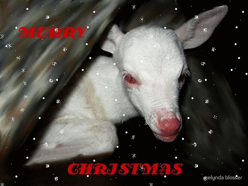 merry christmas by melynda blosser