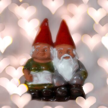 Valentine Tomte - Gnome Couple by ztrnorge