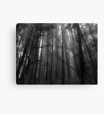 The Woodcutter's Nightmare Canvas Print