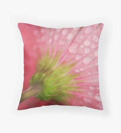 Softly Gerbera Throw Pillow