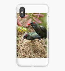 Metallic starlings nesting 2 iPhone Case