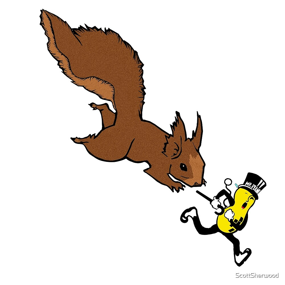Squirrel Trying To Get A Nut by ScottSherwood
