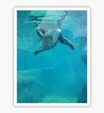 Penguin Underwater Sticker