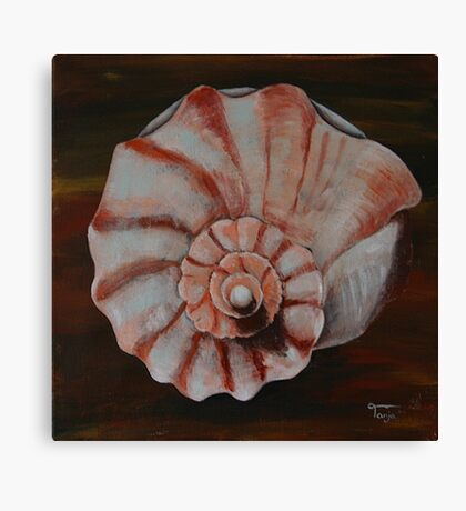 Shell #3 Canvas Print