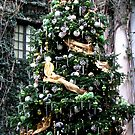 Christmas In The Conservatory At Longwood Gardens by AngieDavies