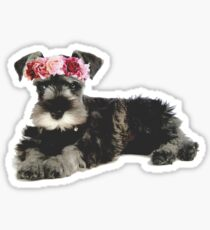 Miniature Schnauzer Flower Crown Sticker
