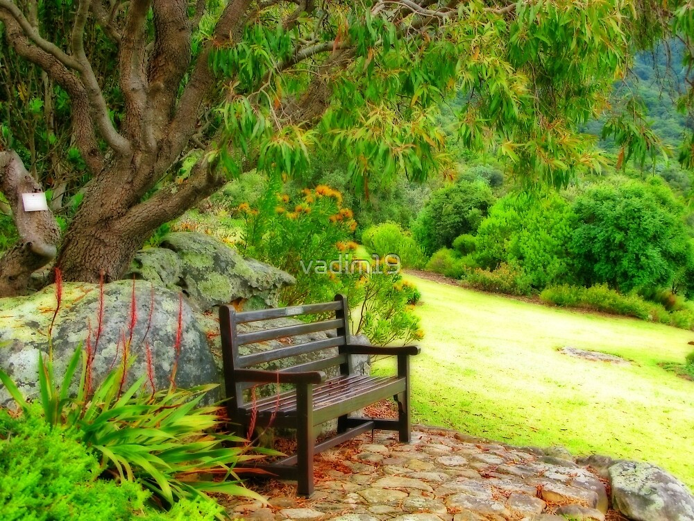 Kirstenbosch National Botanical Garden Cape Town South Africa By Vadim19 Redbubble
