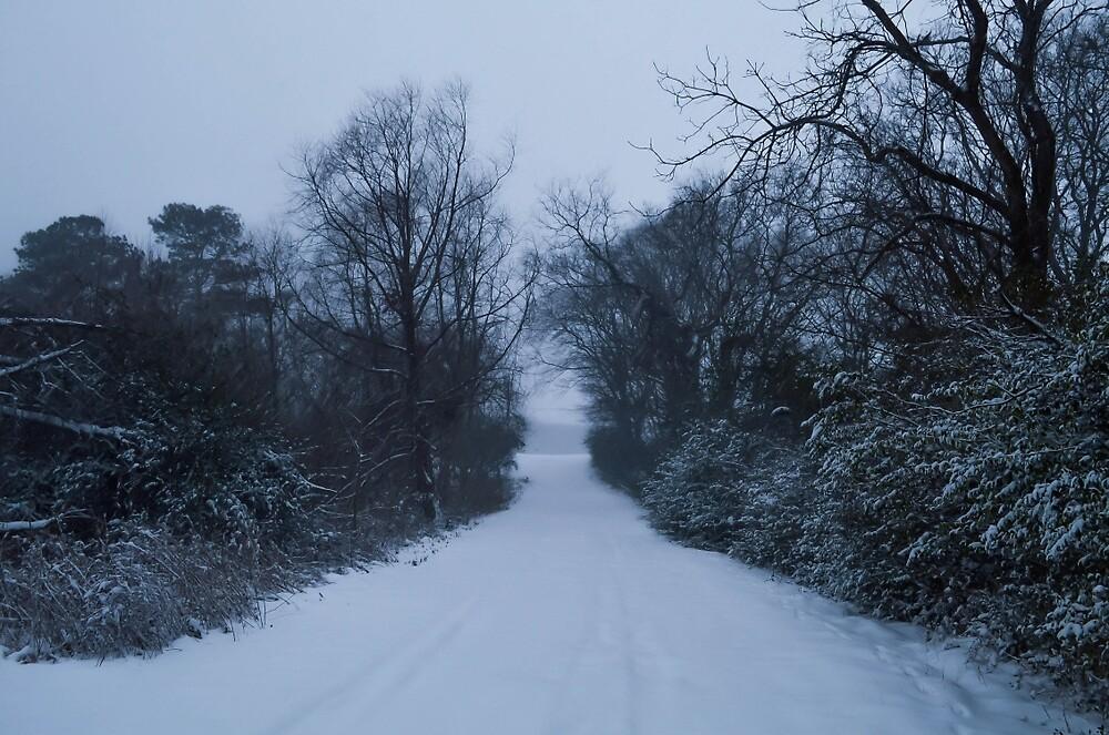 january 7 by katherinemccool