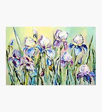 Iris Photographic Print