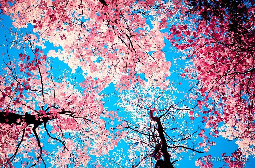 Color Drama III by OLIVIA JOY STCLAIRE