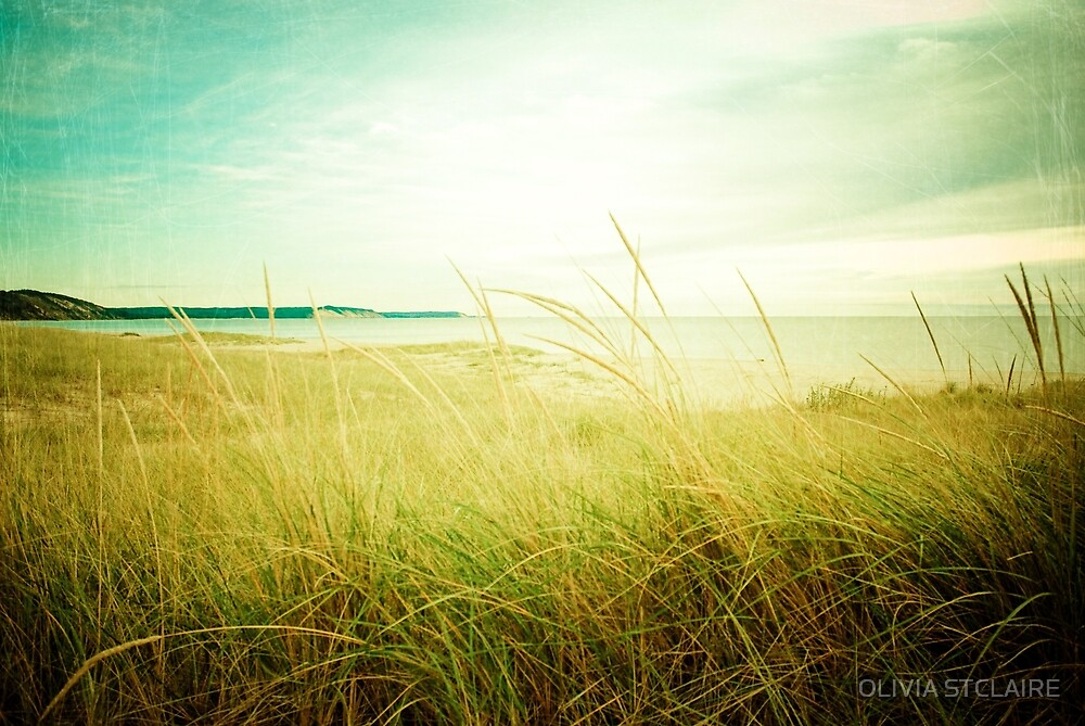 September at the Beach by OLIVIA JOY STCLAIRE