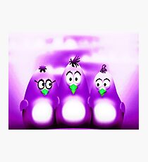 Penguin Triplet In Solid Purple Photographic Print