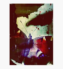 Fear of Butterflies Photographic Print
