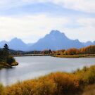 Oxbow Bend by Chappy