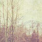 Winter Wonderland  by Nicola  Pearson