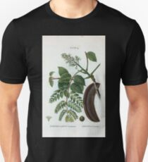 Traité des Arbres et Arbustes 0208 Gymnocladus Canadensis Chicot de Canada Kentucky coffee tree or American coffee tree Unisex T-Shirt