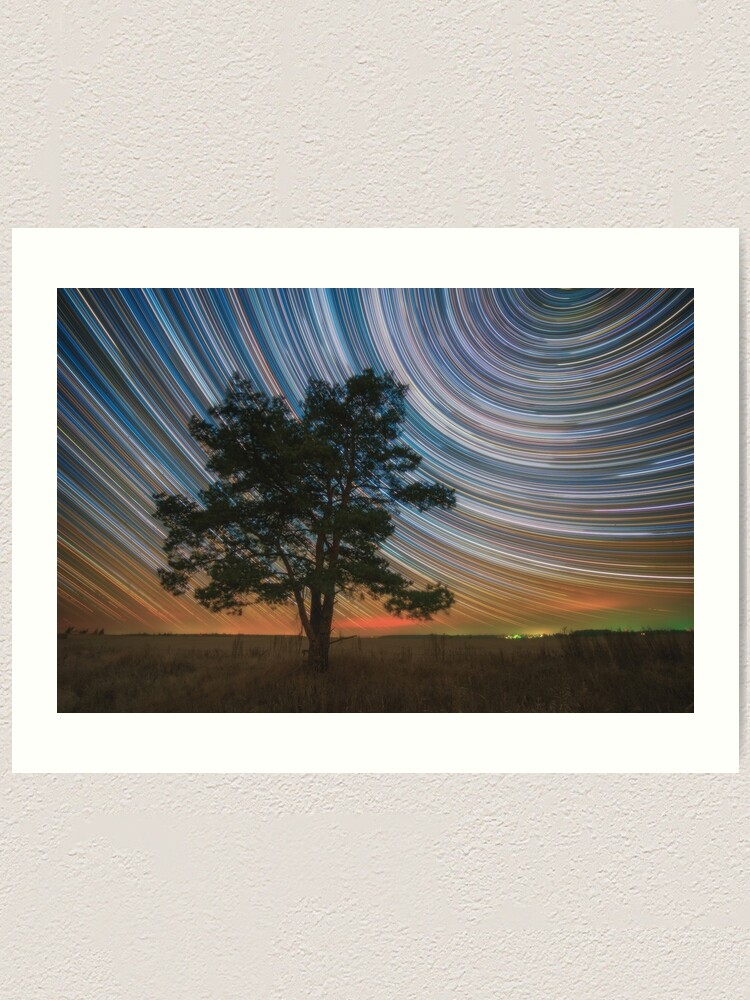 Alternate view of Lone pine Art Print
