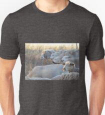 Riding on the Sheeps Back! An Australian Well Known Saying. T-Shirt