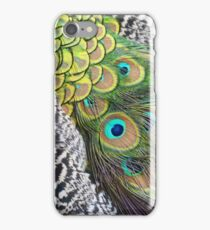 Peacock Patterns iPhone Case/Skin