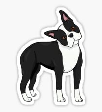 Adorable Boston Terrier Sticker
