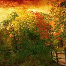 Pioneer Wood by MarianBendeth