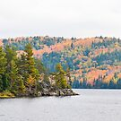 Lake of Two Rivers, Algonquin Park  by Nancy Barrett