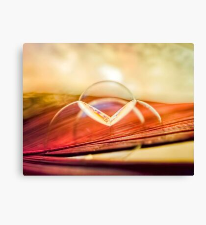 Dream Embers Canvas Print