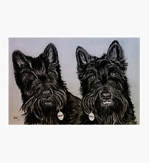 """""""Nellie and Gracie"""" - Dog portraits Photographic Print"""