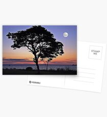 By The Light Of The Silvery Moon Postcards