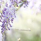 spring dreams... by Vickie Simons