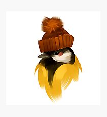 Cute bird in a winter knitted hat Photographic Print