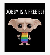 DOBBY IS A FREE ELF (LGBT) Photographic Print