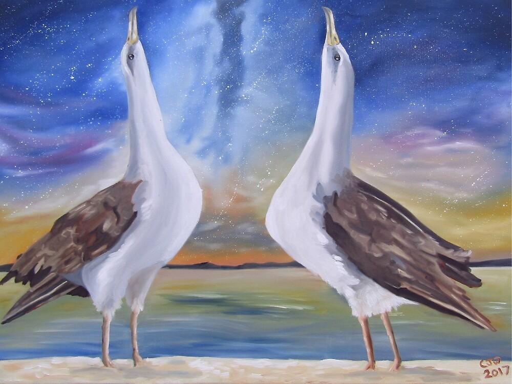 Laysan Albatross Waltz by cjwaterfield