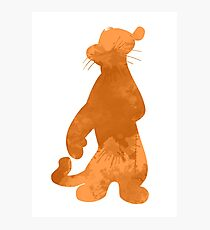 Tiger Inspired Silhouette Photographic Print